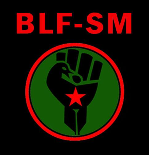 BLF SM ABRV LOGO